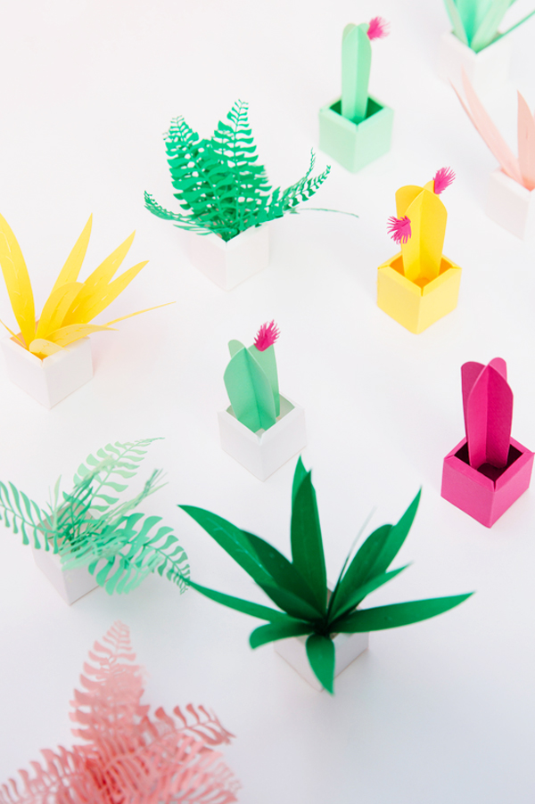 Bloesem Kids | 5 Creative Plant Projects