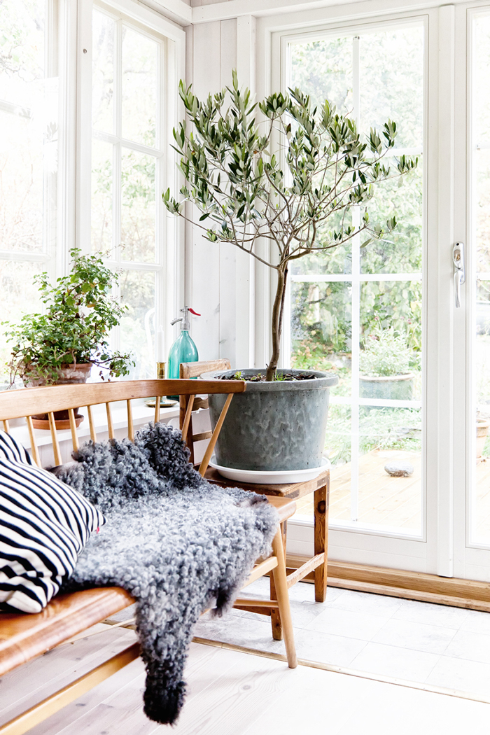 Bloesem Living | Interiors: A Green Statement