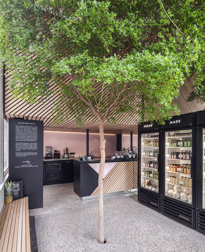 Bloesem Living l Link Love: Bringing greenery indoors