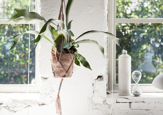 Hanging Planter by Hilli Studio